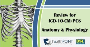 Review+for+ICD-10+A&P